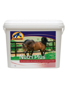 HORSE SUPPLEMENT NUTRIPLUS