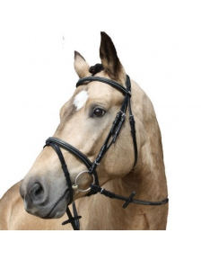 BRIDLES SHAPED
