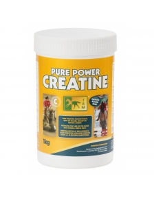 HORSE SUPPLEMENT PURE POWER CREATINE