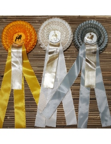 PRIZE RIBBON GOLDIKA DRESSAGE 2