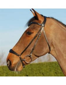 BRIDLES DROPE