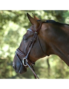 BRIDLES DRESSAGE