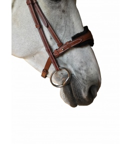 NOSEBAND XL SHEEP