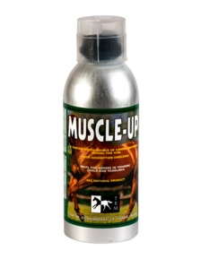 HORSE SUPPLEMENT MUSCLE-UP