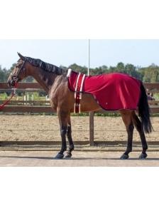 RUG LUNGING